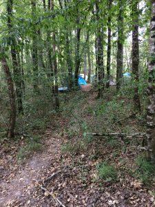 Het paadje tussen de bomen door naar mijn tent